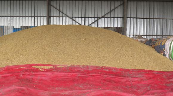 Прокуратурата разследва сделки със зърно, ощетили бюджета с над 3 милиона лева
