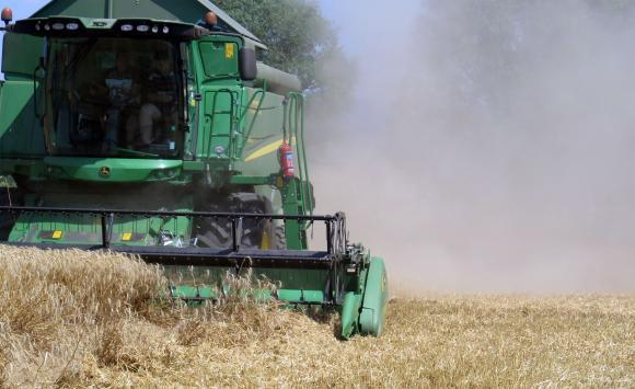 Влошените прогнозни данни спряха понижението на цените на пшеницата на европейския пазар