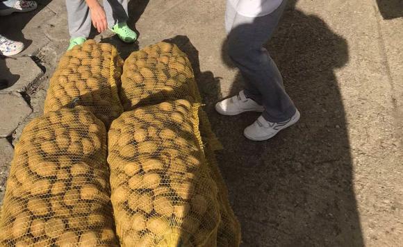 Изкупуването на картофите в южна Украйна спря заради лошото им качество