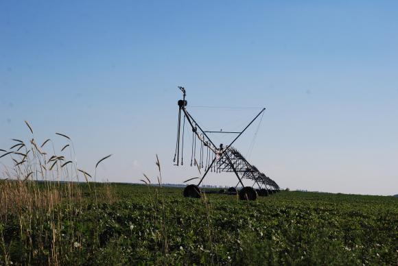 Зърнопроизводителите с остра критика срещу отпадането на напояването от Плана за възстановяване
