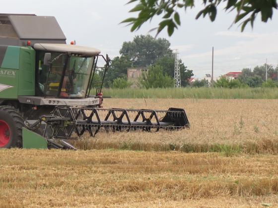 Реколтата от пшеница в Турция ще остане под 16 милиона тона