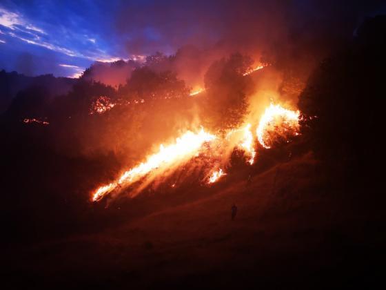 Банкова сметка в подкрепа на семействата на загиналите край Сандански горски служители