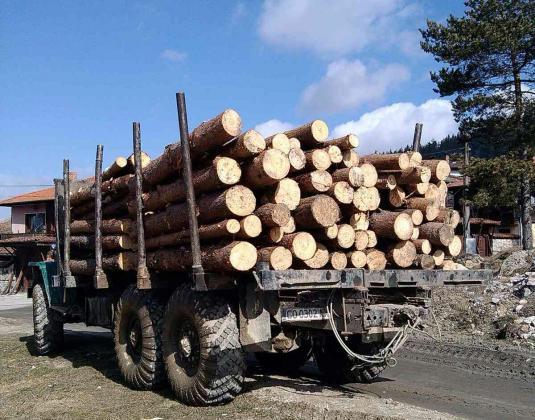 Горски стражар от Дупница събра от жители на Крайници 10 000 лв. от позволителни за добив на дърва за огрев и отпраши в чужбина