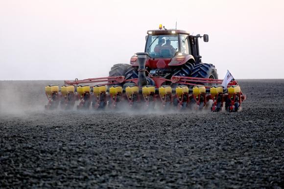 От 5 години в Украйна почвената влага не е била така оптимална за есенна сеитба