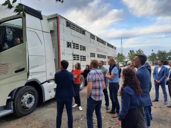 Евроексперти провериха превозите с животни по българската граница